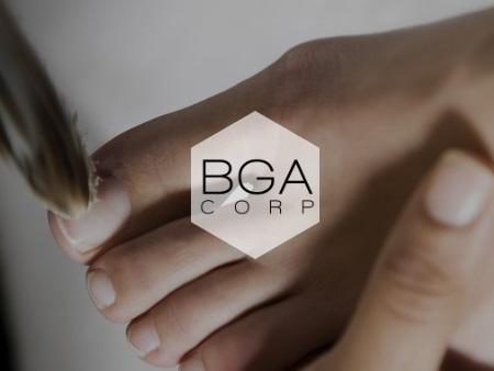 BGA Corp